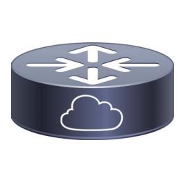 Cisco 1000V系列云服务路由器