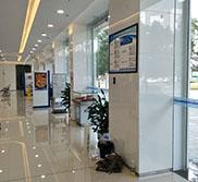 建设银行防爆膜