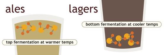 啤酒狂欢:一样的欢乐 ,不一样的体验